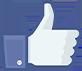 facebook-thumb-blue